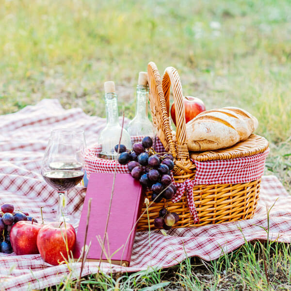 The Perfect Pairing in the Park Picnic